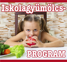 iskolagyumolcs program banner